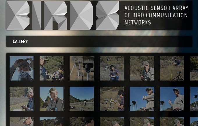 Acoustic Sensor Array of Bird Communication